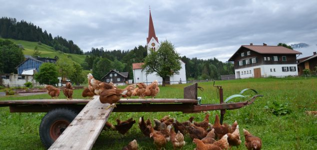"""Das """"hühner.ei"""" in Sibratsgfäll"""